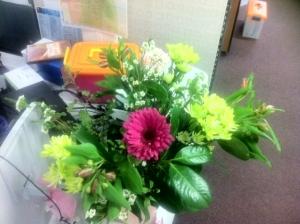 Farewell flowers from Darwin
