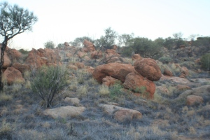 The red rocks surrounding Alice Springs