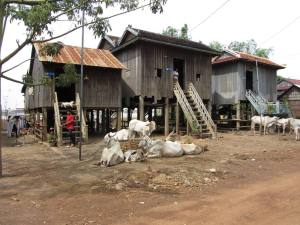 Village scene Mekong shore Kampong Cham