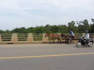 Horse drawn carriages mingle with traffic across Kizuna Bridge