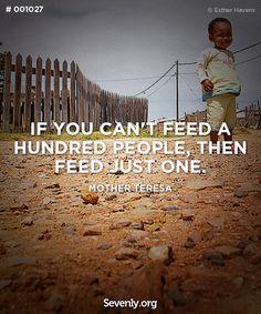 Feed 100