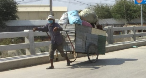 Trash cart cropped