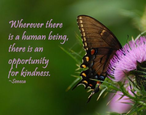 Opportunity for Kindness