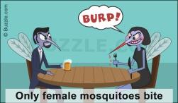 Females bite